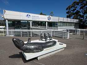 Australia's Antarctic Headquarters