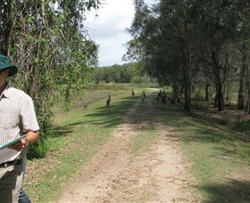 Coombabah Lakes Conservation Area Logo and Images