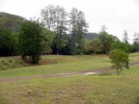 Brooyar State Forest Image