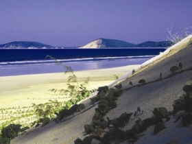 Cooloola, Great Sandy National Park Logo and Images