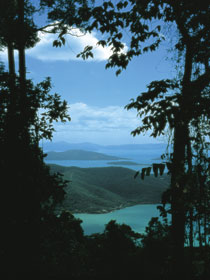 Whitsunday Great Walk Logo and Images