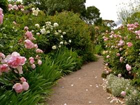 Ross Garden Tours Image