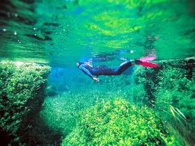 Piccaninnie Ponds Conservation Park