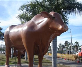 Rockhampton Bull Statues Logo and Images