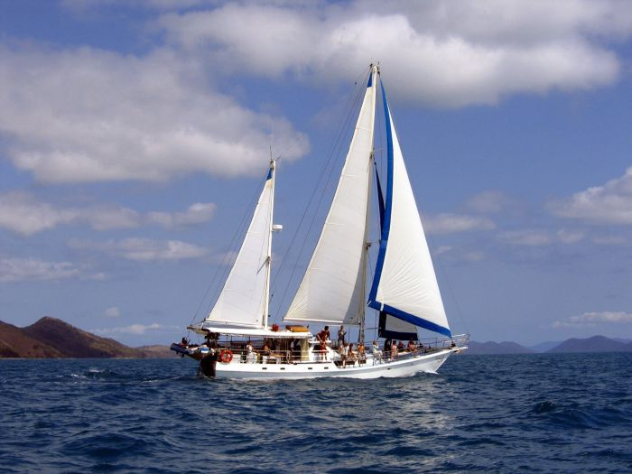 Adventure, Cruise, Dive and Outer Reef - Whitsundays Sailing Adventures Logo and Images