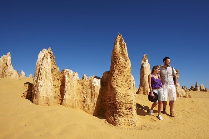 Pinnacles Day Trip from Perth Including Yanchep National Park Logo and Images
