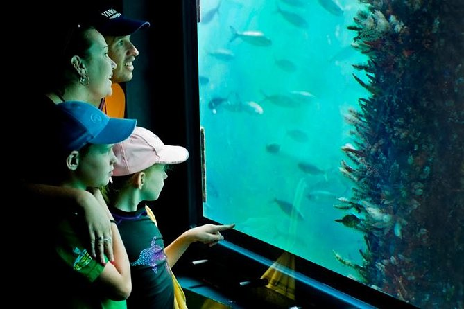 2-hour Busselton Jetty Package: Jetty train and Underwater Observatory Logo and Images