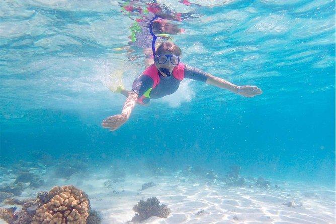 Ningaloo Reef Kayaking and Snorkeling Tour Logo and Images