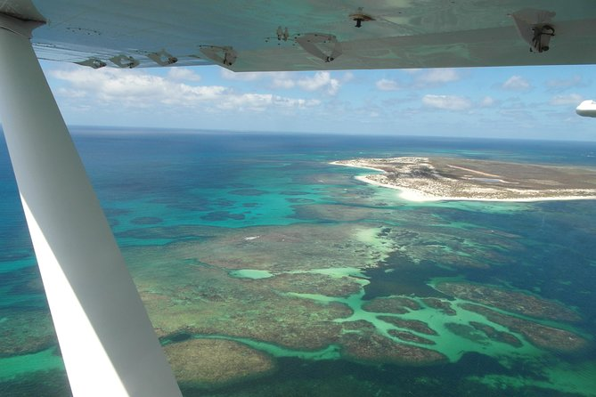 Abrolhos Flyover Logo and Images