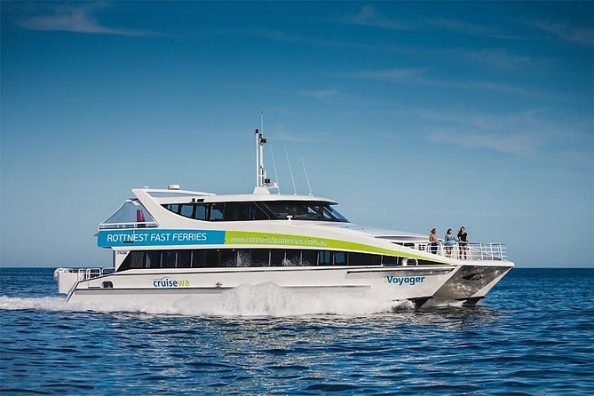 Whale-Watching Cruise and Hillarys Boat Harbour Day Trip from Perth Logo and Images