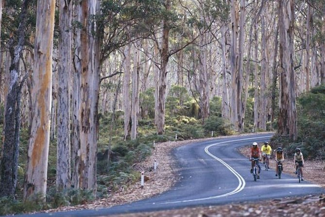 Margaret River and Geographe Bay Region Day Trip from Perth Logo and Images