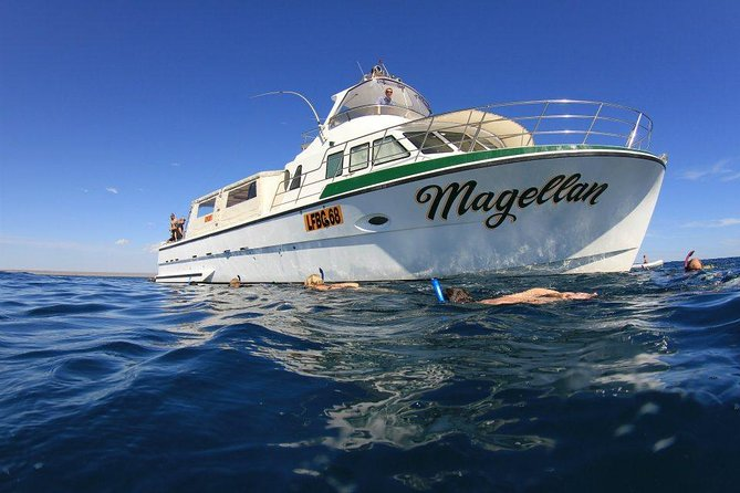 Ningaloo Reef Whale Shark Snorkeling Adventure from Exmouth Logo and Images