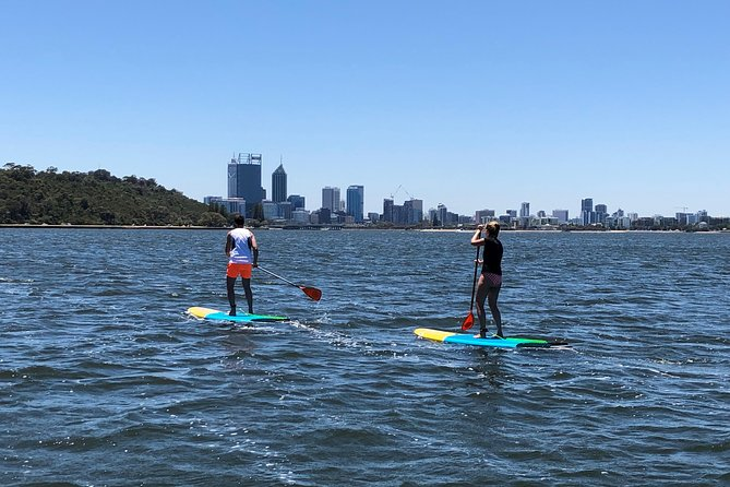 Stand Up Paddle Board Hire Logo and Images
