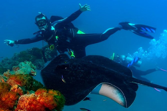 Scuba Dive the S.S. Yongala Wreck on the Great Barrier Reef Logo and Images