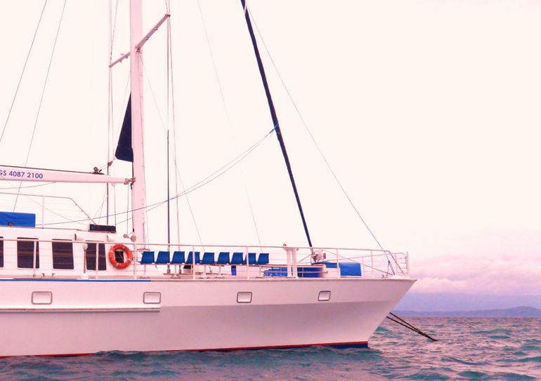 Wavedancer Low Isles Great Barrier Reef Sailing Cruise from Port Douglas Logo and Images