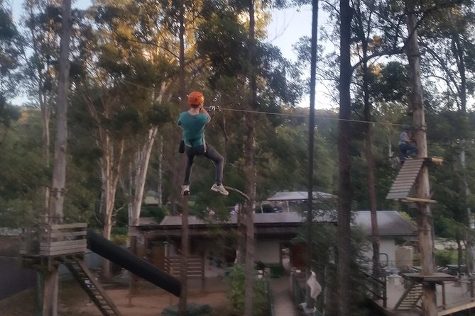 Gold Coast to Treetop Challenge Mount Tamborine Logo and Images