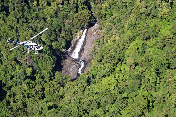 Scenic Reef & Rainforest Helicopter Flight from Port Douglas Logo and Images