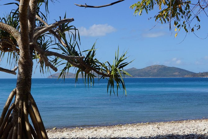 Conway National Park Coral Beach Walk including Shute Harbour from Airlie Beach Logo and Images