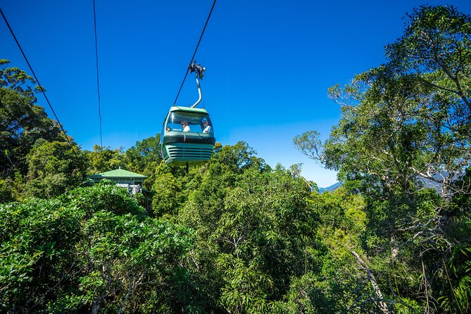 Kuranda Scenic Railway Day Trip from Palm Cove Logo and Images