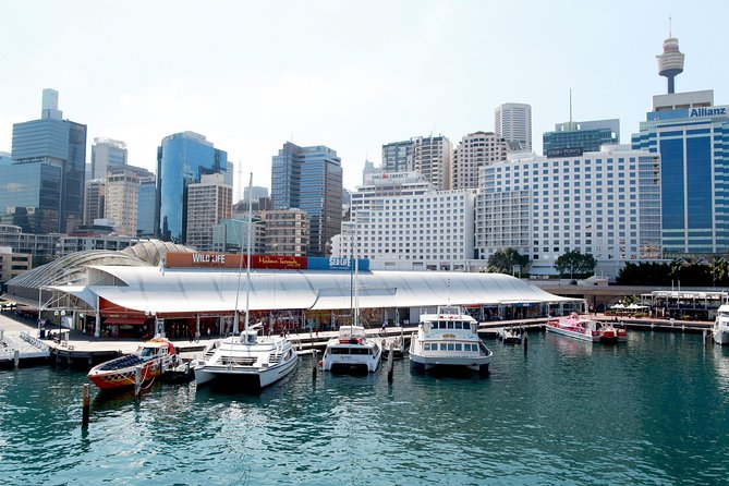 Sydney Attraction Pass: Darling Harbour Experience Ticket