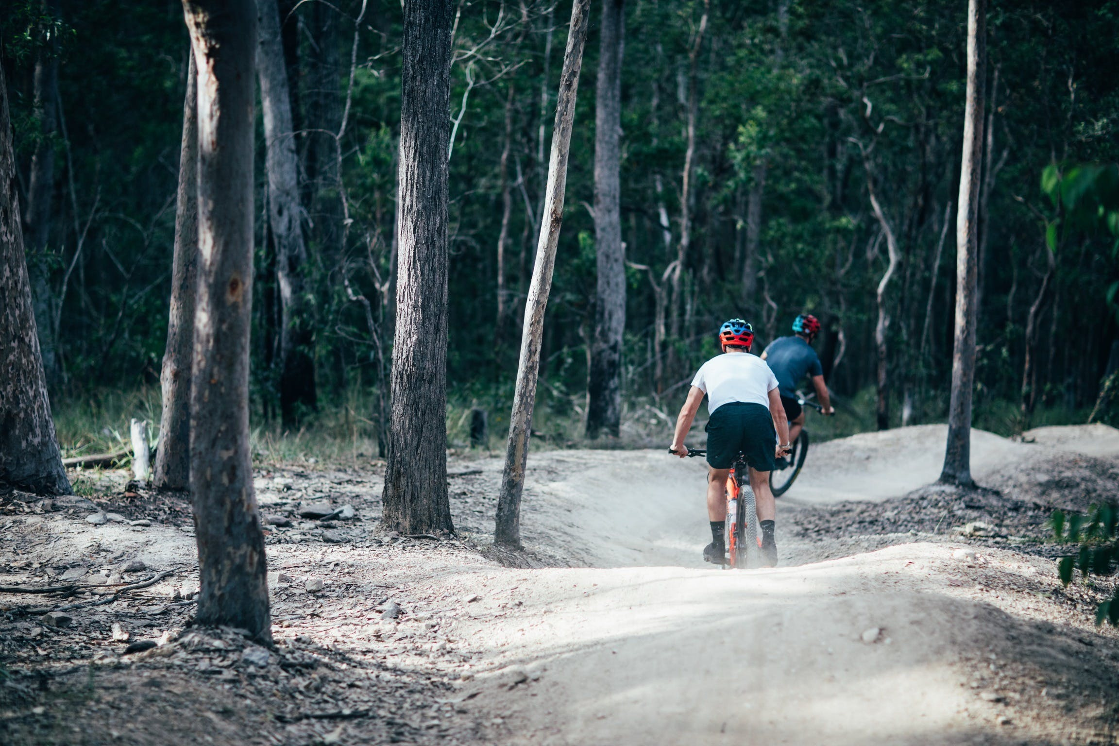 Nerang Mountain Bike Trails Logo and Images