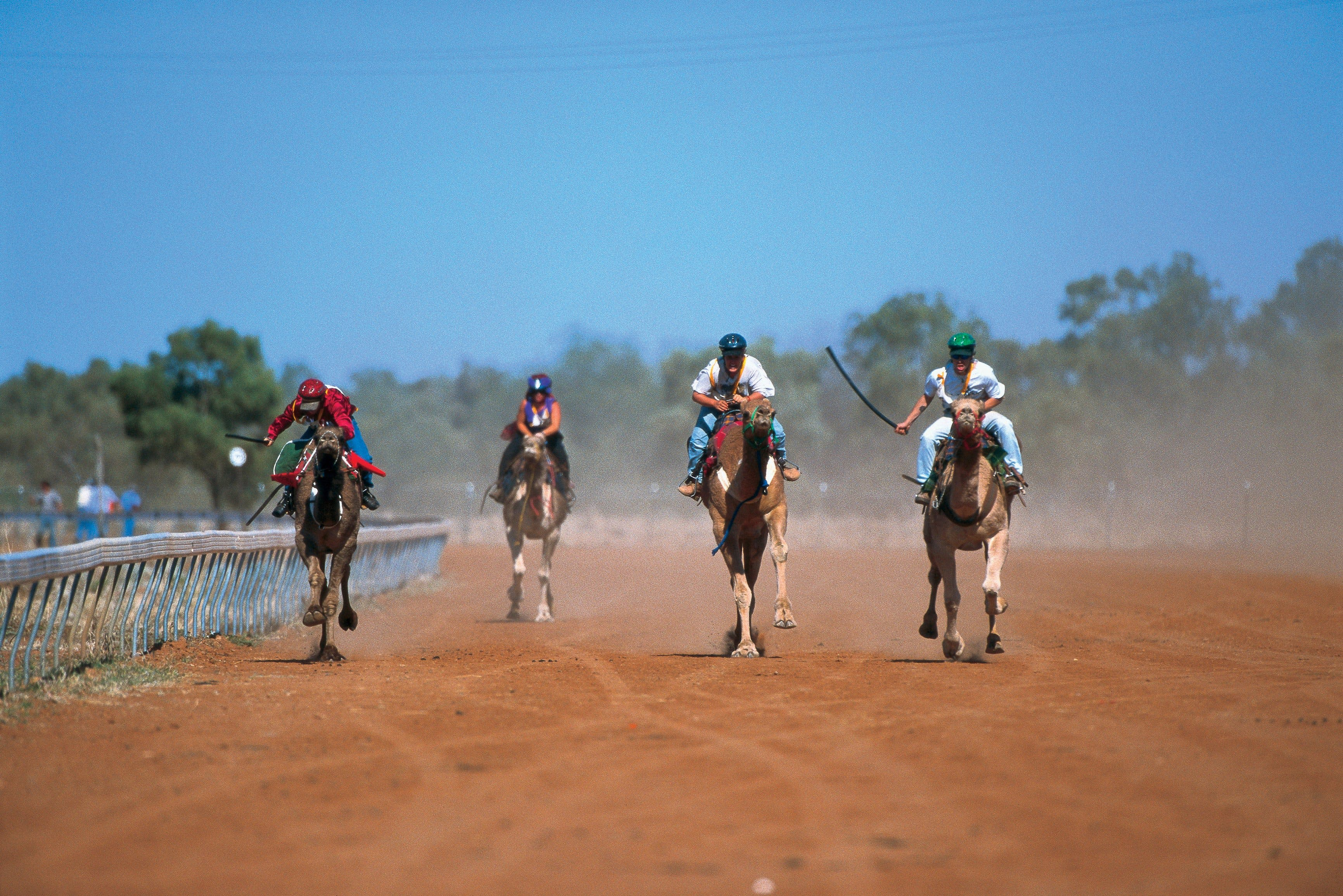 Outback Camel Festival Trail Logo and Images