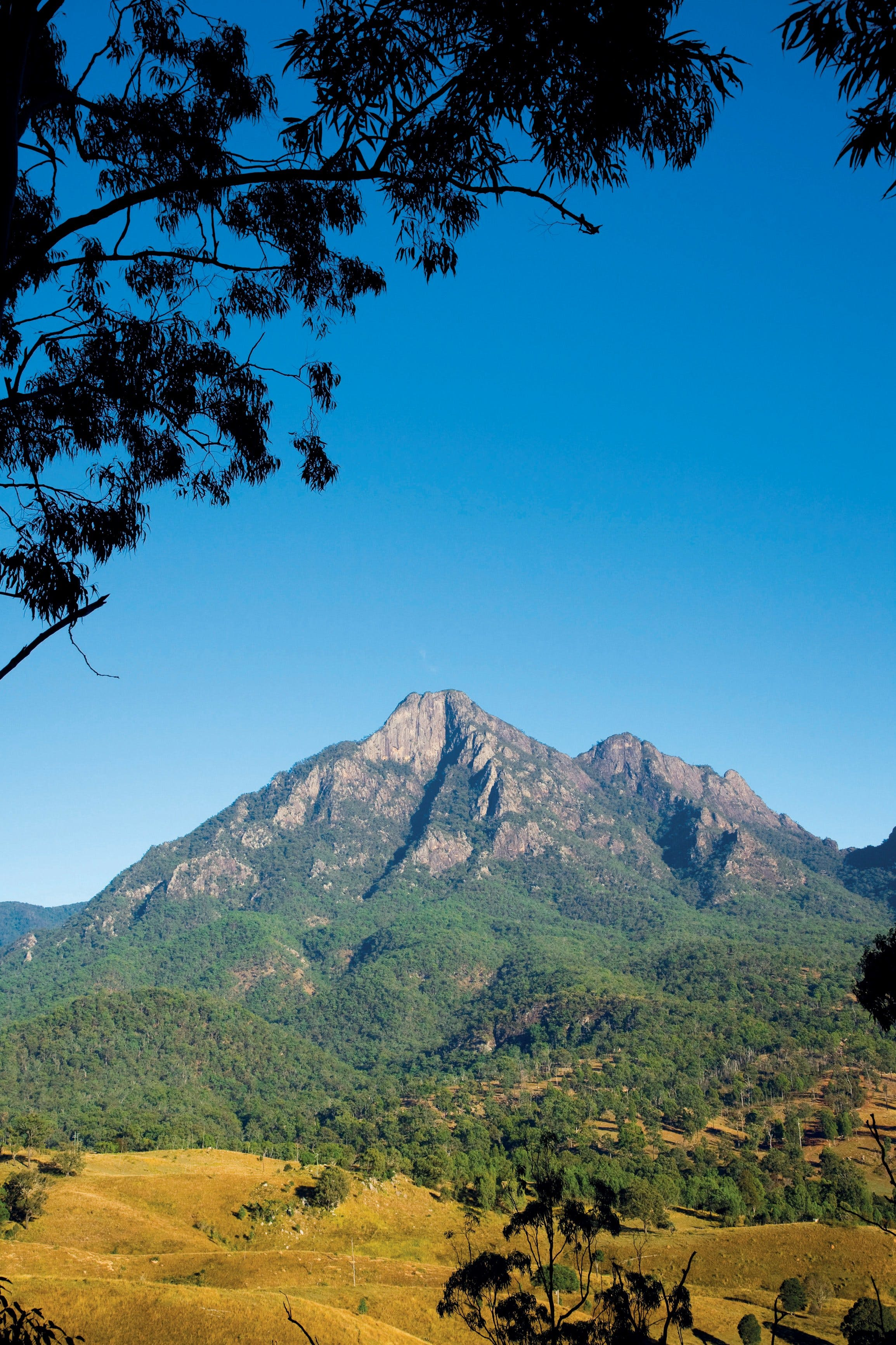 Mount Barney National Park Logo and Images
