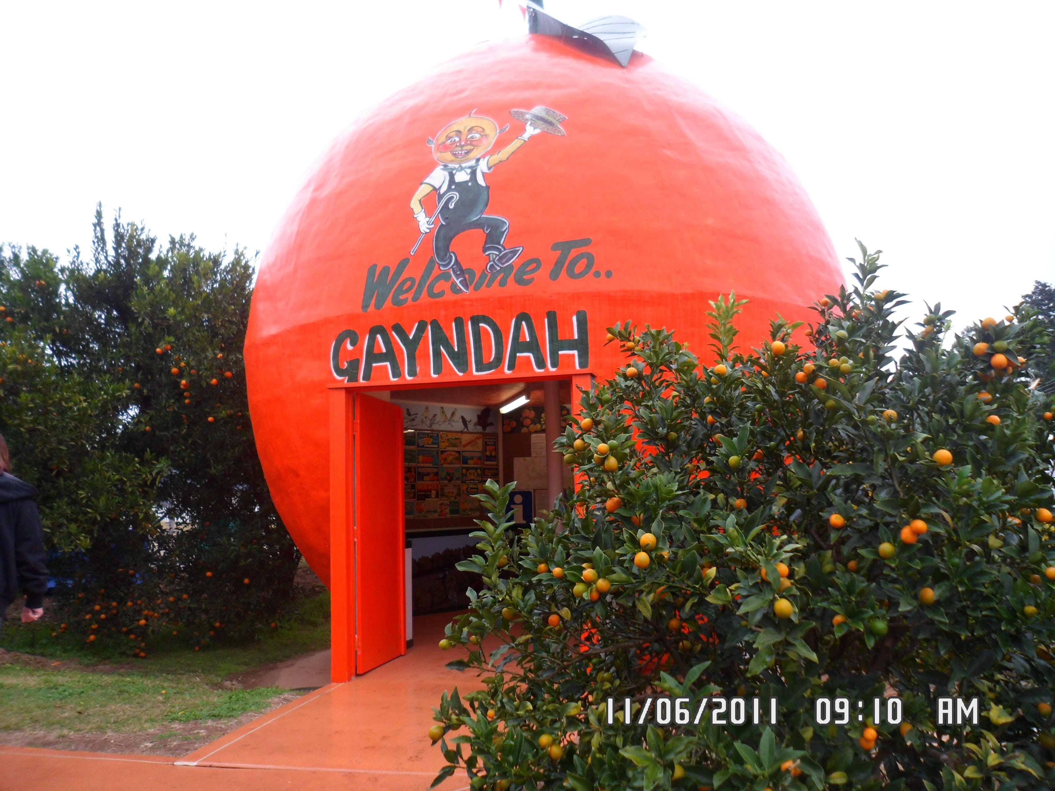 Gayndah's Big Orange Logo and Images