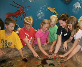 Naturaliste Marine Discovery Centre Logo and Images