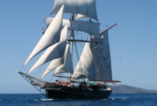 Australian Tallship Cruises Logo and Images
