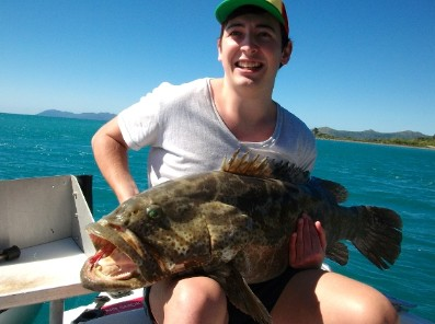Gone Fishing by Coral Sea Fishing Charters Airlie Beach Logo and Images