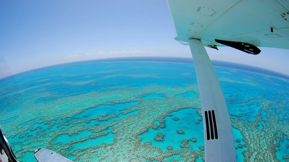Air Whitsunday Day Tours