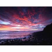 Ocean Art Australia