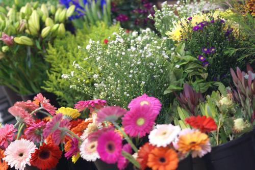Grafton Florist