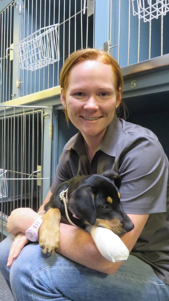 Grafton Veterinary Clinic
