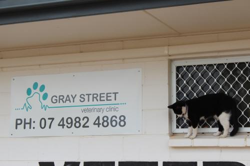 Gray Street Veterinary Clinic
