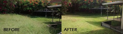 Phil's Cleaning & Yard Maintenance