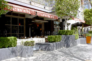 Bistro Vite Logo and Images