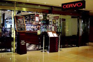 Cervo Logo and Images
