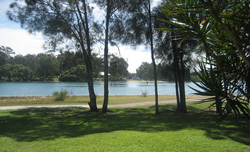 Currumbin RSL Logo and Images