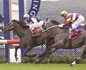 Gosford Race Club