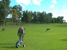 Coffin Bay Golf Club
