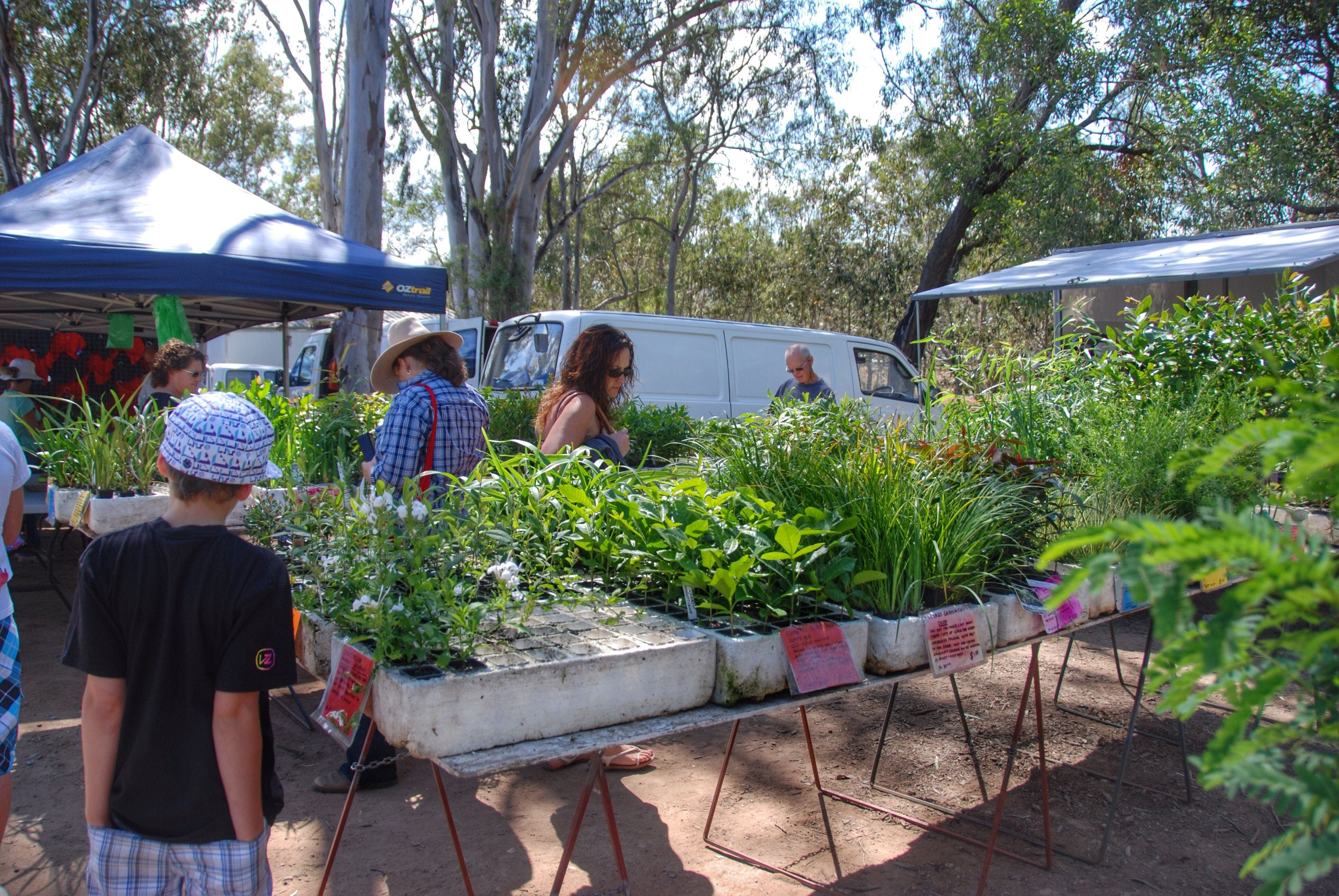 Fernvale Country Markets Logo and Images