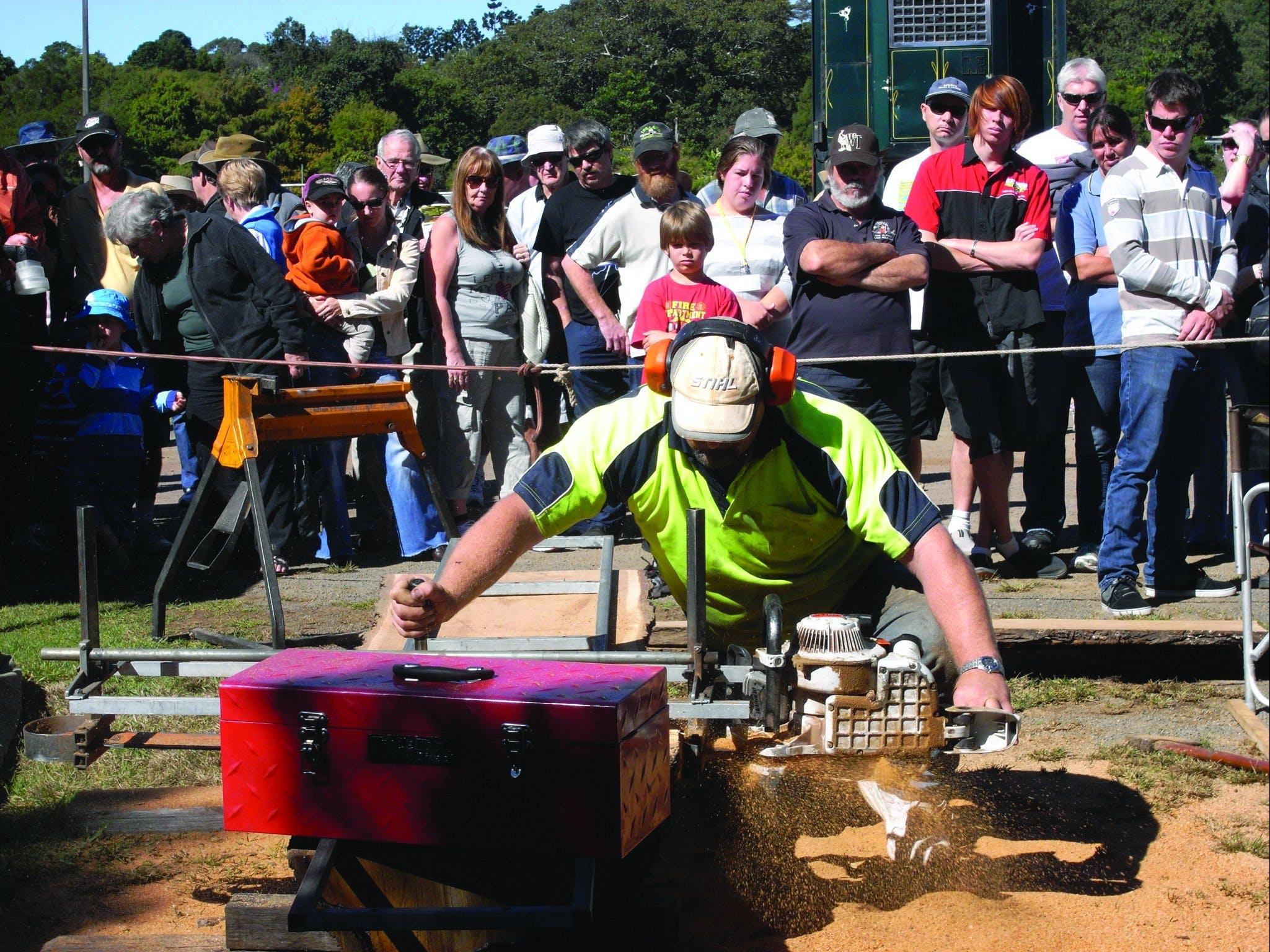 Maleny Wood Expo: From Seed to Fine Furniture Logo and Images