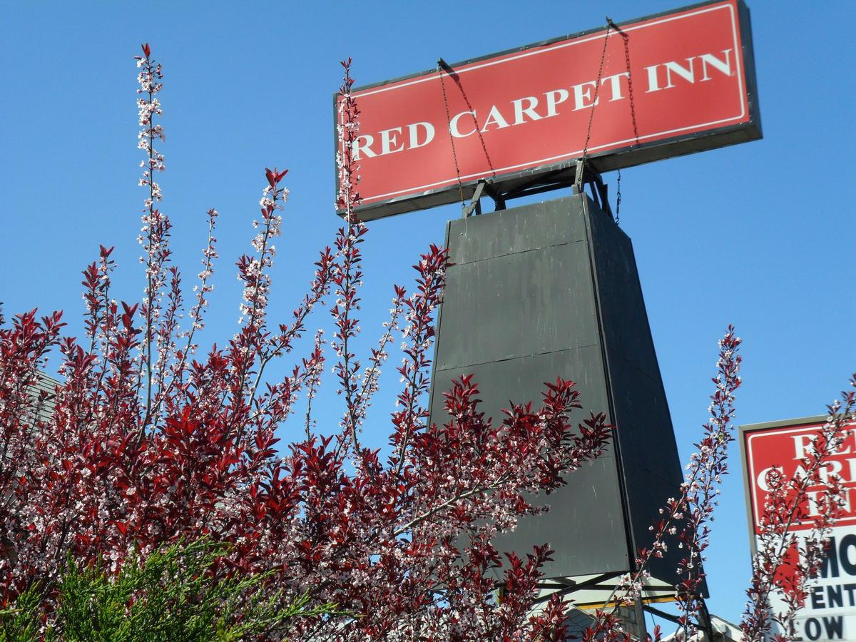 Red Carpet Inn Brooklawn