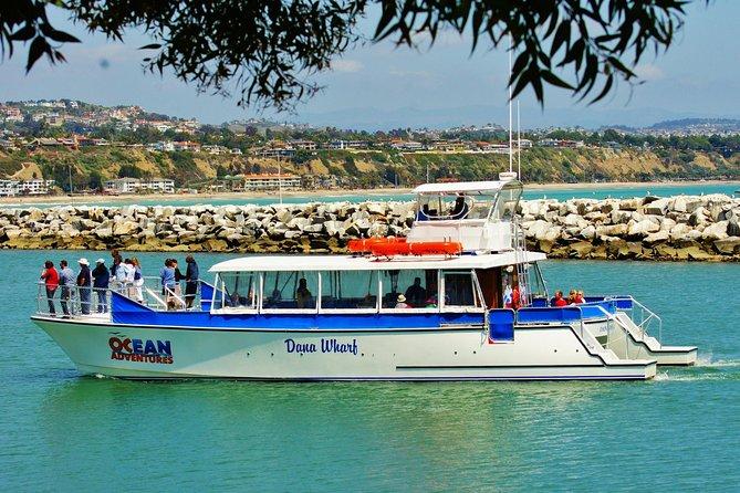 Luxury Catamaran Sunset and Wine Cruise from Dana Point