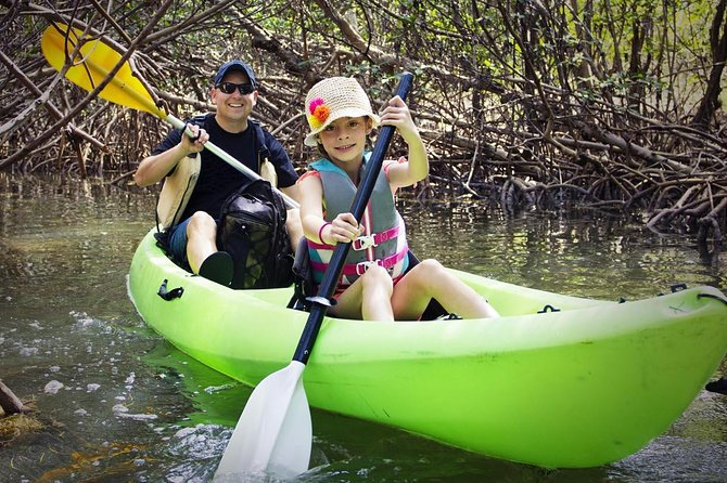 Fully Guided Kayaking Backwater Manatee and Dolphin Tour