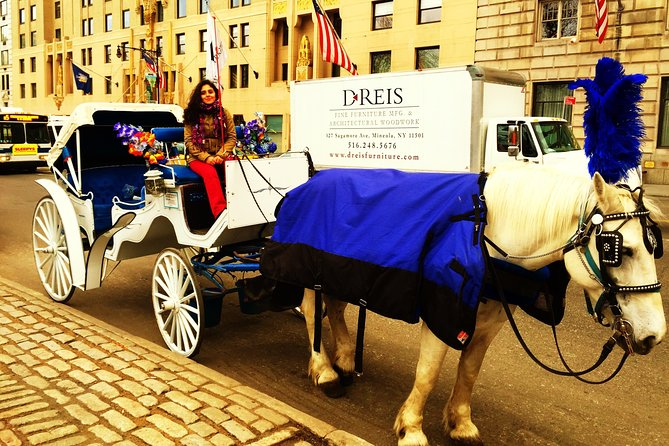 Birthday Private Horse Carriage Tour