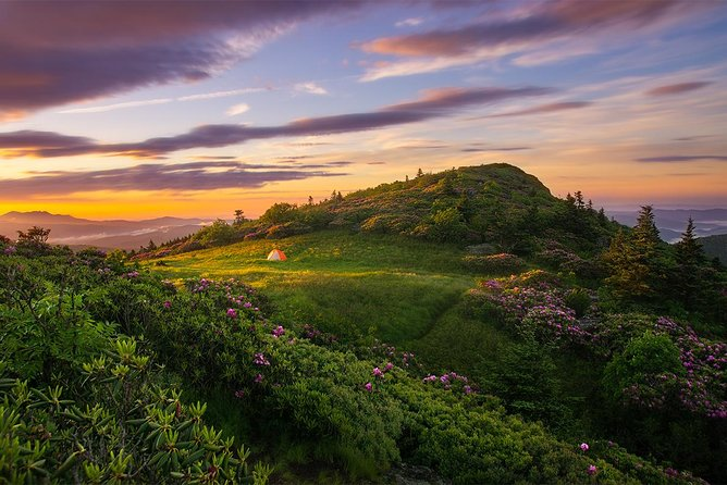 Full-Day Roan Highlands Tour