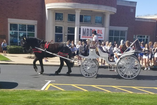 Horse drawn carriage services